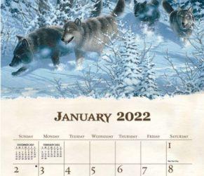 Beyond the Woods 2022_2 Lang Kalender