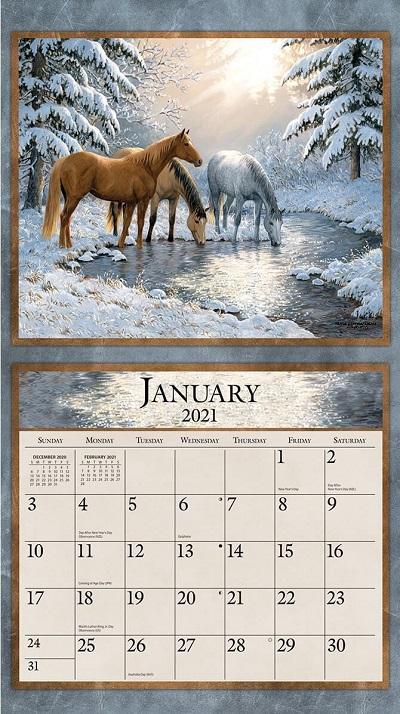 Horses in the Mist 2021 Lang Kalender Maandplaatje