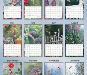 Hummingbirds 2022_3 Lang Kalender