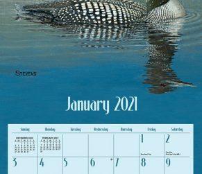 Loons on the Lake 2021 Lang Kalender maandplaatje