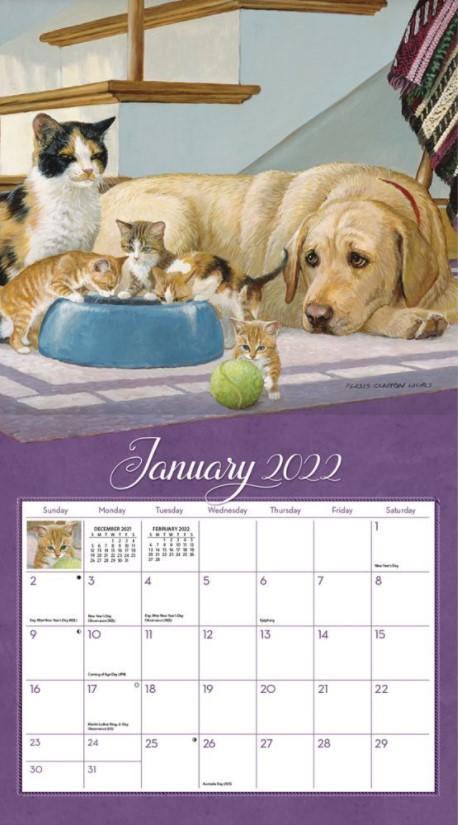 Love of Cats 2022_2 Lang Kalender