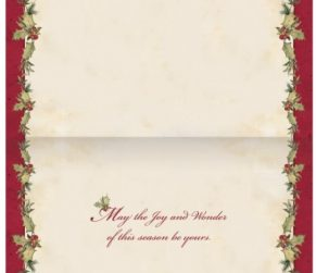 Grown Up Christmas Wish Boxed Christmas Cards
