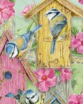 Birds-in-the-Garden-Meerjarige-Lang-Kalender.jpg