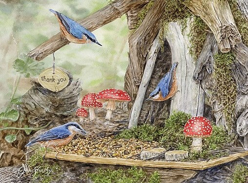 Fairy-Garden-Boxed-Note-Cards.jpg