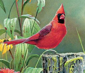 Songbirds-2021-Verticale-Lang-Kalender.jpg